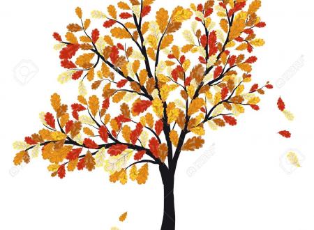 ART: When autumn falls…