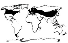 TEMPERATE ZONE – climate zones